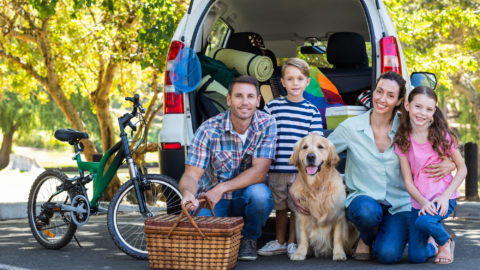 Children and Dogs | Michaels Pack | Professional Dog Training Services